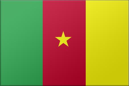 camerun-bandera.jpg