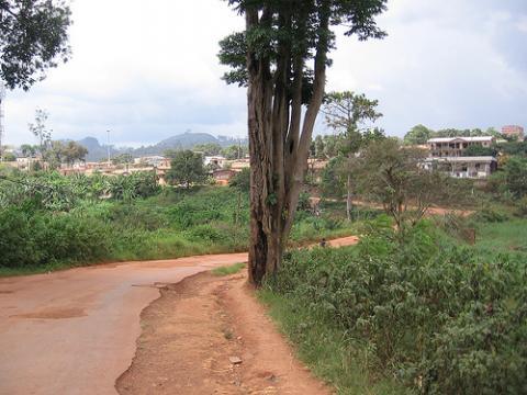 camerun-malaria.jpg